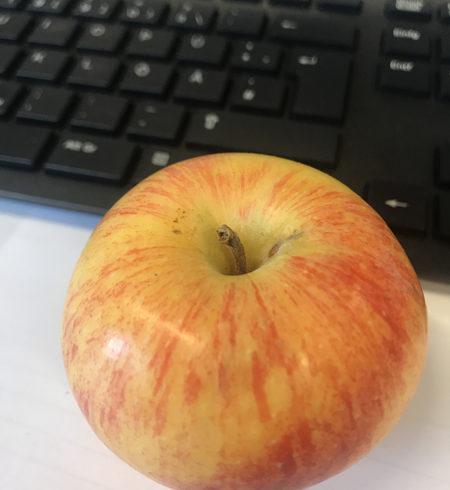 Apfel und Computertastatur